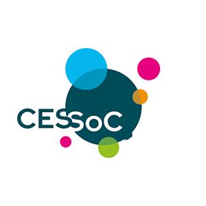 Confédération des Employeurs du secteur Sportif et SocioCulturel